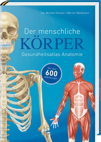 Der menschliche Körper - Komet Verlag GmbH